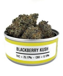 BlackBerry Kush Tins